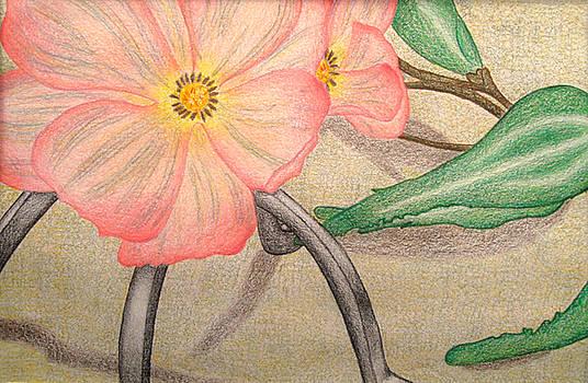 Bloom by Brianna Lynn