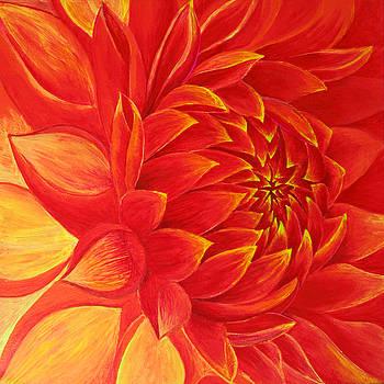 Bloom by Justin Abraham Johnson
