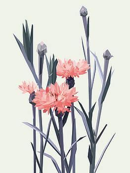 Bloom - Pink by David Lange