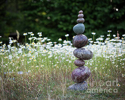 Bloom by Pontus Jansson