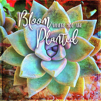 Bloom where you are planted quote, mint green and turquoise  by Marcia Luce at Luceworks