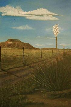 Bloomin' Yucca by Sheri Keith