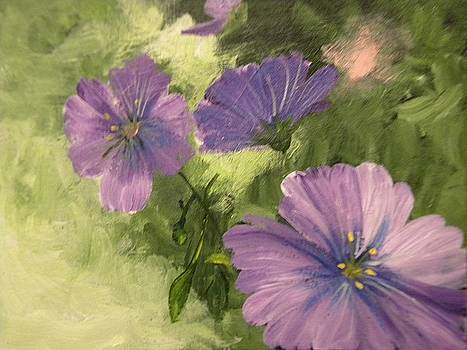 Blooming Beauty by Chris Heitzman