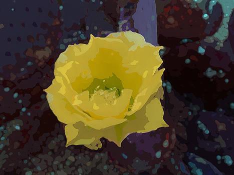 Stan  Magnan - Blooming Cactus