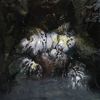 Blooming Ice by Janice Nabors Raiteri