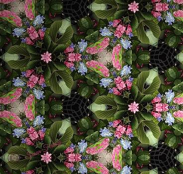 Blooming Kaleidoscope by Susan Ferency