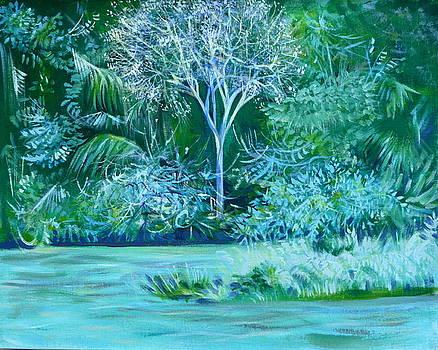 Anna  Duyunova - Blooming Panama Tree