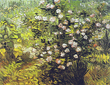 Vincent van Gogh - Blooming Rose Bush