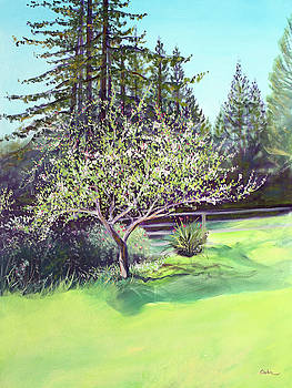 Blooming Spring Apple Tree and Green Meadow by Asha Carolyn Young