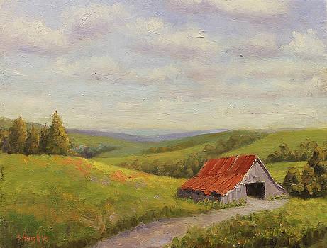 Bloomington Barn by Steve Haigh