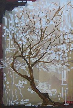 Blossom by David McKee