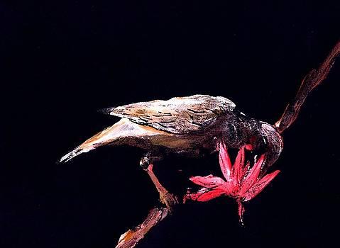 Blossom feeder by Ana Bikic