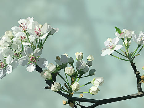 Blossom - Light by David Lange