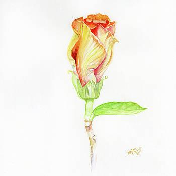 Blossom by Nadine Dennis