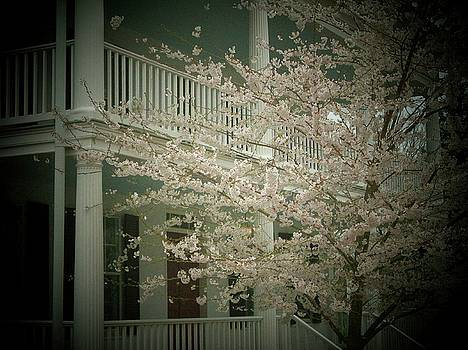 Blossoms and House by Joyce Kimble Smith