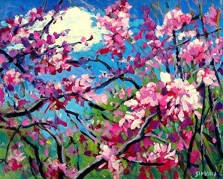 Blossoms by Brian Simons