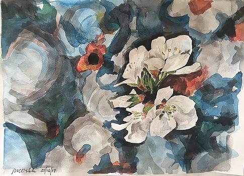 Blossoms by John Ostrowick