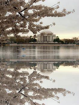 Blossom's Reflection by Frank Garciarubio