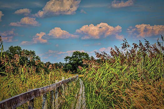 Blowing on path #h7 by Leif Sohlman