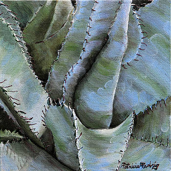 Blue Agave by Patricia Pasbrig