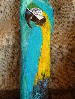 Blue and Gold Macaw by Ann Michelle Swadener
