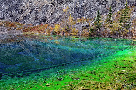 Reimar Gaertner - Blue and Green algae in the clear water of Grassi Lakes Canmore