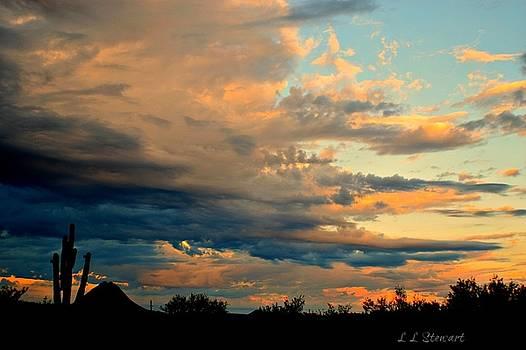 Blue and Orange Sunset by L L Stewart