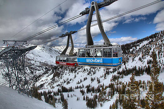 Adam Jewell - Blue And Red Snowbird Trams