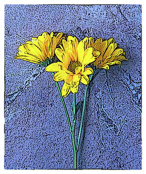 Blue and Yellow by Dw Johnson