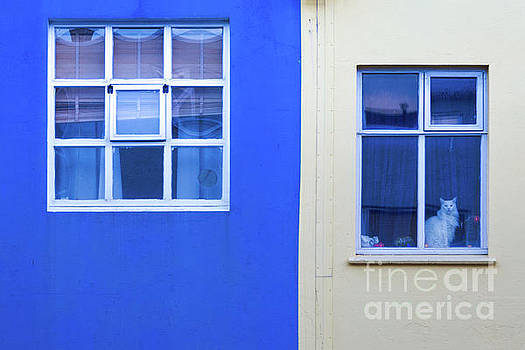 Blue and Yellow Windows by Jerry Fornarotto