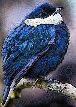 Blue by Antonella Torquati