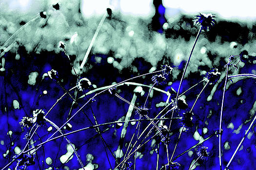 Blue Art by Mariia Sorokina