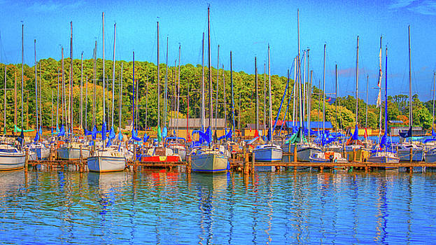 Blue at the Dock by Deb Henman
