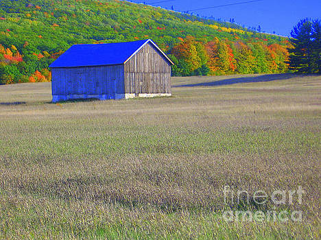Blue Barn by Lisa Dionne
