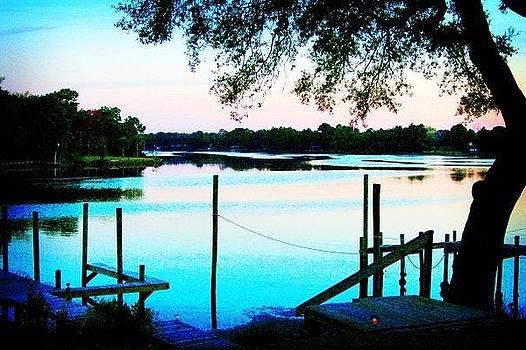 Blue Bayou by Patricia Bennardo