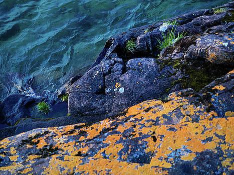 Blue Beach by Whitney Leigh Carlson