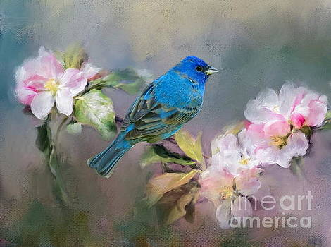 Blue Beauty in the flowers by Myrna Bradshaw