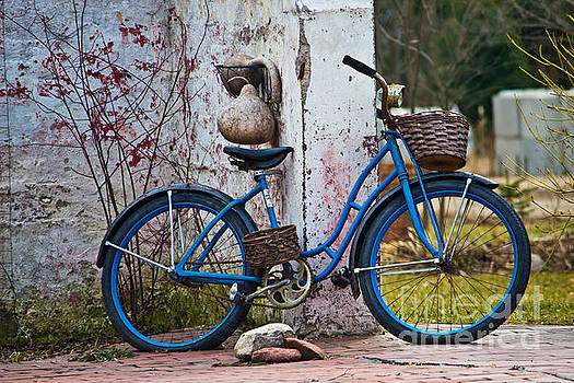 Ms Judi - Blue Bicycle