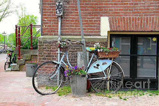 Blue Bicycles Planter in Amsterdam by Julia Willard