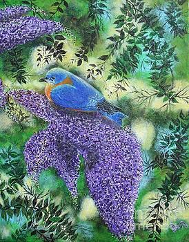 Blue Bird by William Ohanlan