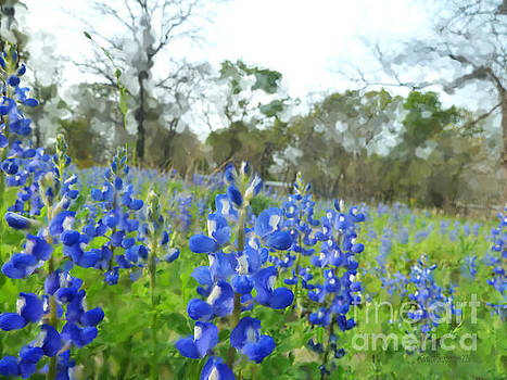 Blue Bonnet Explosion II by Carolina Liechtenstein
