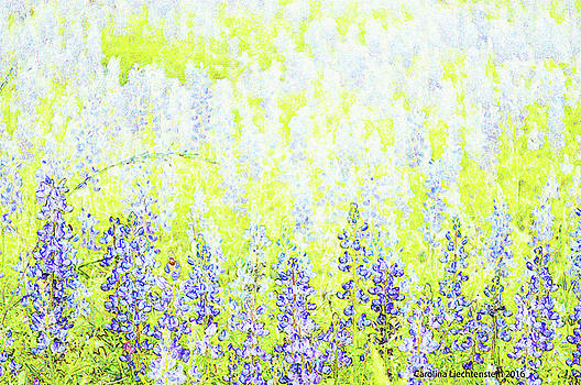 Blue Bonnet Impressions II by Carolina Liechtenstein