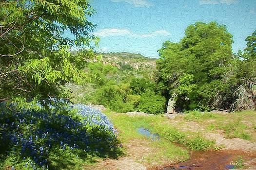 Blue Bonnet Stream  5591 by Fritz Ozuna