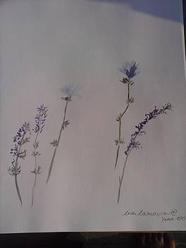 Blue Botanical by Lisa LaMonica