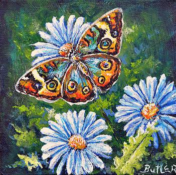 Blue Buckeye by Gail Butler