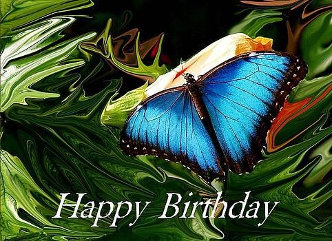 Blue Butterfly Card by Jim  Darnall