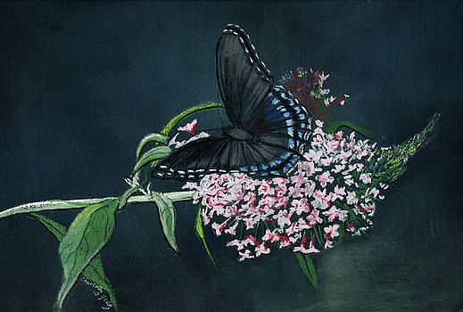 Blue Butterfly by Charlotte Yealey