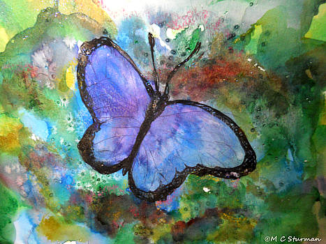 Blue Butterfly by M c Sturman