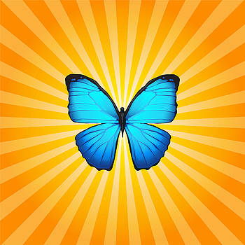 Blue Butterfly Sun by Ginny Gaura