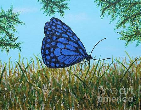 Blue Butterfly by William Ohanlan
